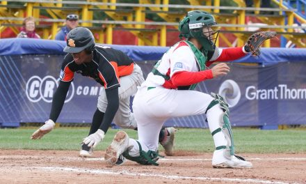 The Netherlands, Japan open Day 5 of the U-18 Baseball World Cup with wins