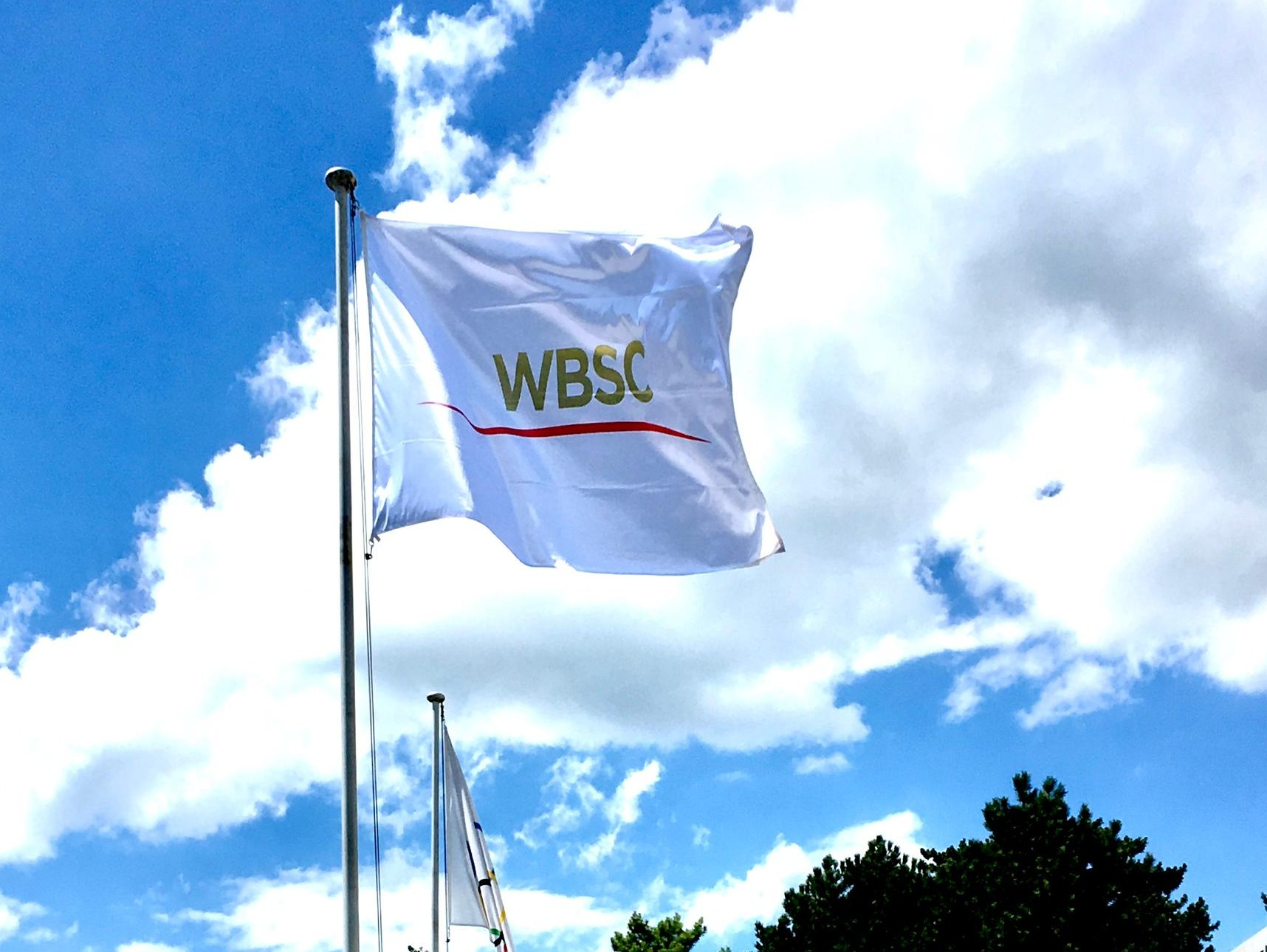 WBSC flag