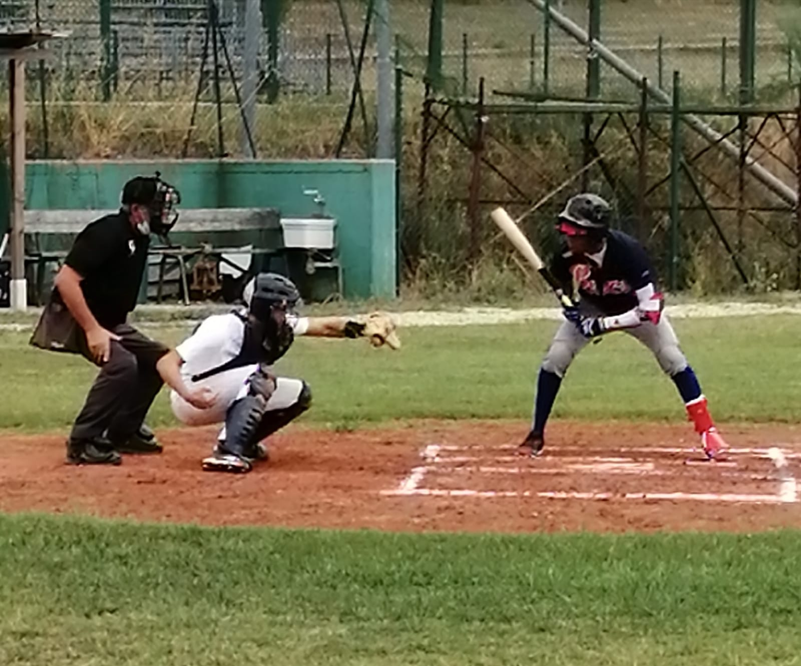 Baseball Abruzzo