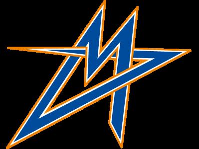 Metrostars flag