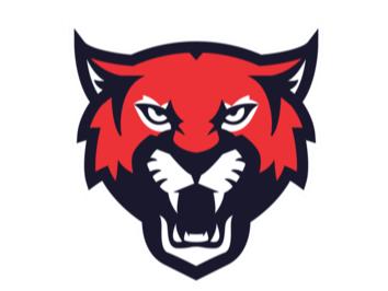 Tonbridge Bobcats flag