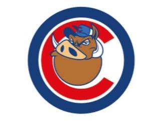 A.S.D. Chieti Baseball Club flag