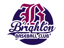 Brighton Brewers flag