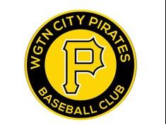 Wellington City Pirates flag