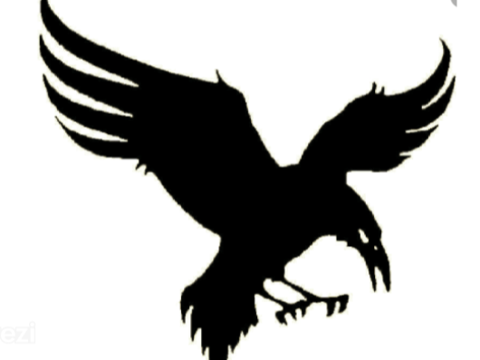 FRS flag
