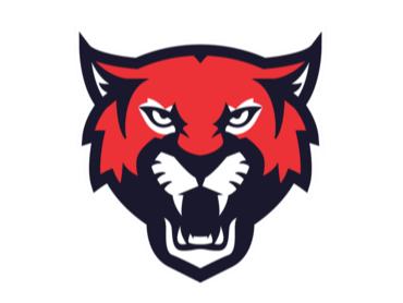Tonbridge Wildcats flag