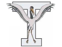 TRA flag