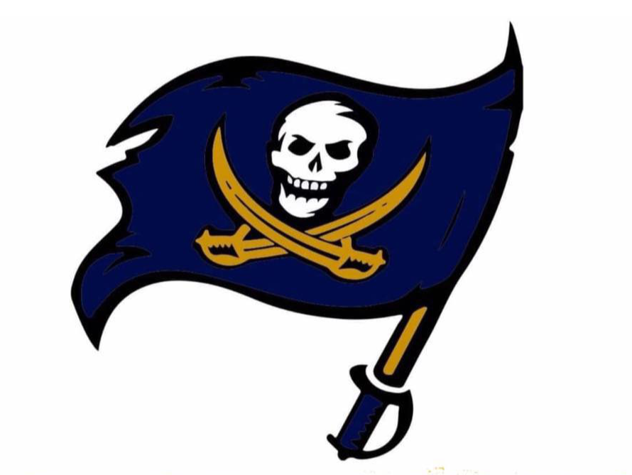 South Coast Seadogs flag