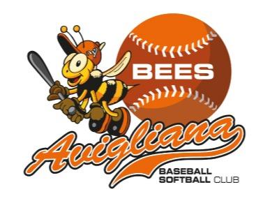 A.S.D. Avigliana Bees flag