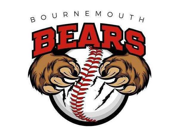 Bournemouth Bears (A) flag