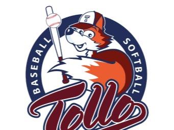 A.S.D. Baseball Softball Tollo flag