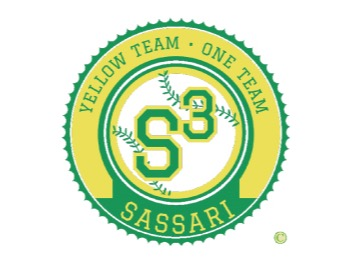 S.S.D. Yellow Team Baseball flag