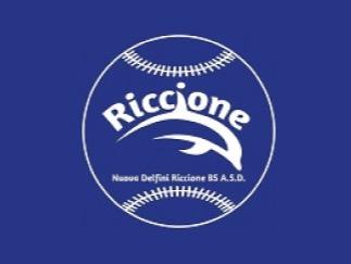 Nuova Delfini Riccione B.S. A.S.D. flag