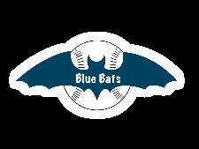 Blue Bats flag