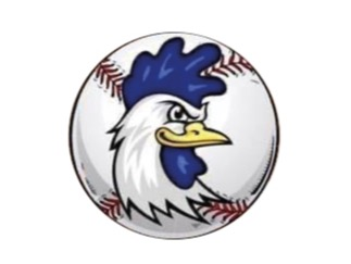 JFK Baseball Mondovì A.S.D. flag