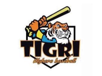 A.S.D. Tigri Baseball Alghero flag