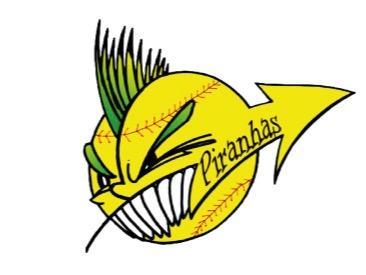 A.S.D. Valmarecchia Baseball Softball Club flag