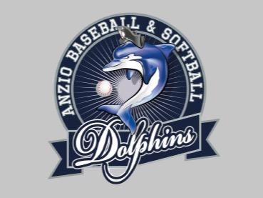 A.S.D. Dolphins Anzio Baseball flag