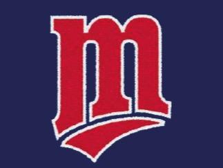 Baseball Malnate Vikings A.S.D. flag