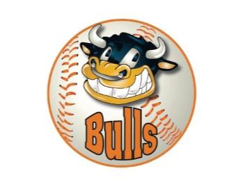 A.S.D. Bulls Rescaldina flag