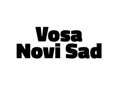VNS flag