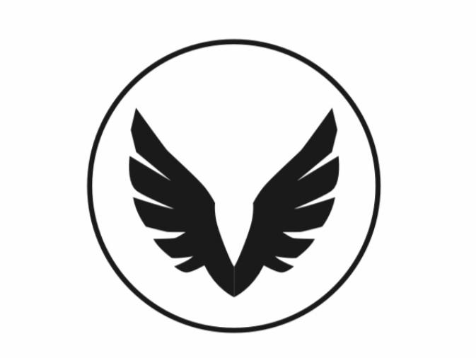 Falun Ravens flag